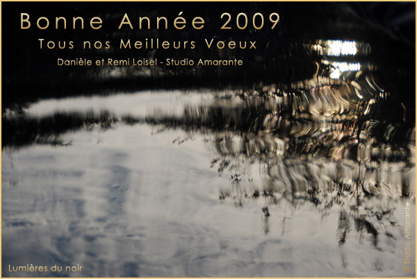 Voeux2009remi