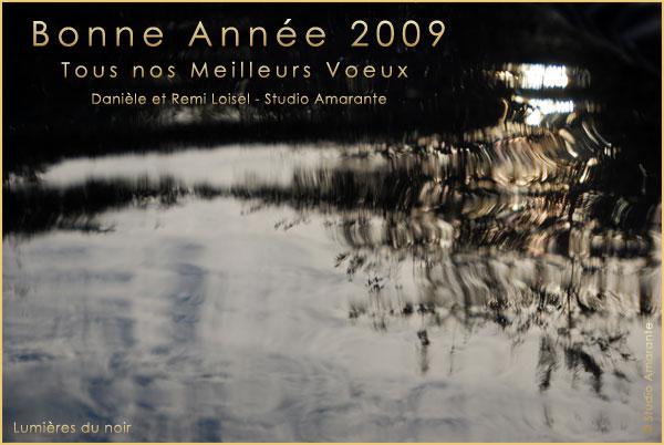 Voeux2009remi
