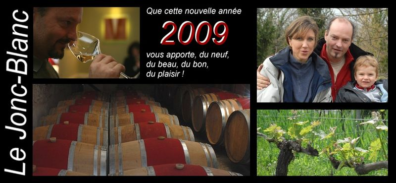 Voeux 2009