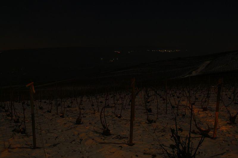 Vignesunderthemoon