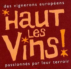 Logohautlesvins
