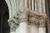 Cathedrale_reims_noe_vigne